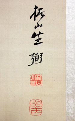 椿椿山 4