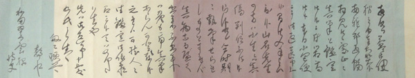Hashimoto Gahou 8