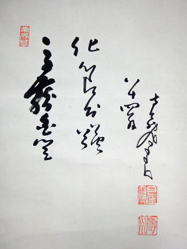 �ケ州全忠(南天棒) 10