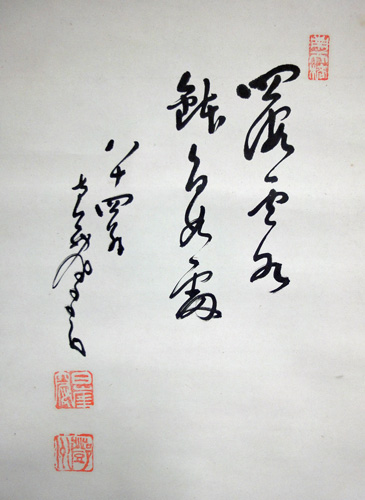 �ケ州全忠(南天棒) 9