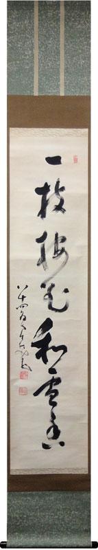 鄧州全忠 (南天棒) 1