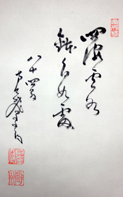 鄧州全忠 (南天棒) 7