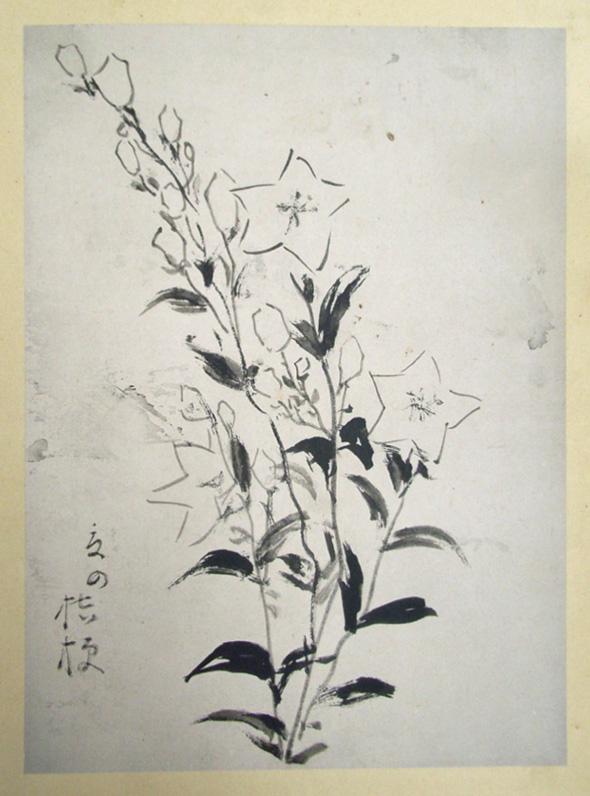 Masaoka Shiki15
