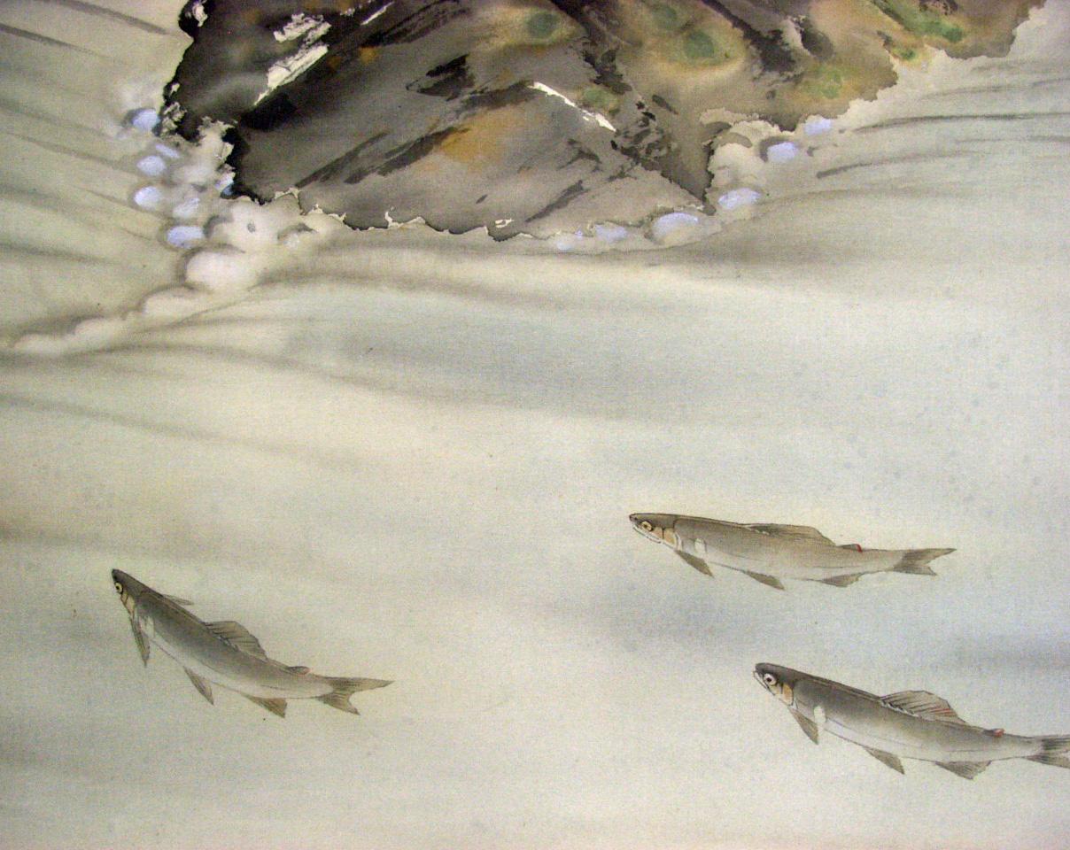 水野柳人 登り鮎