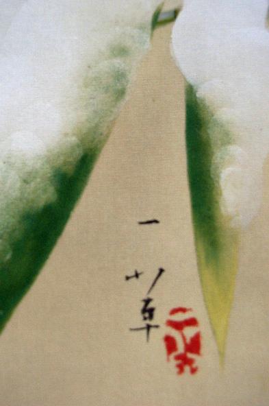 阪口一草4