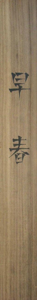 Kimoto Taika5